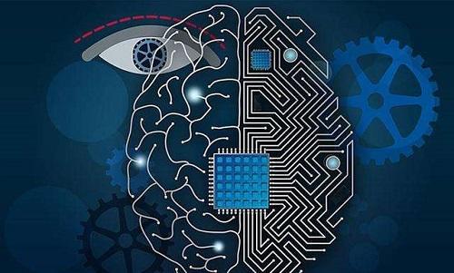数据目录与机器学习市场的成熟
